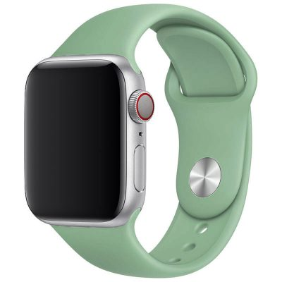 Silicone Band Apple Watch 42/44mm Beryl Large
